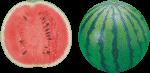 Скачать PNG картинку на прозрачном фоне Арбуз и половинка арбуза, вид сбоку