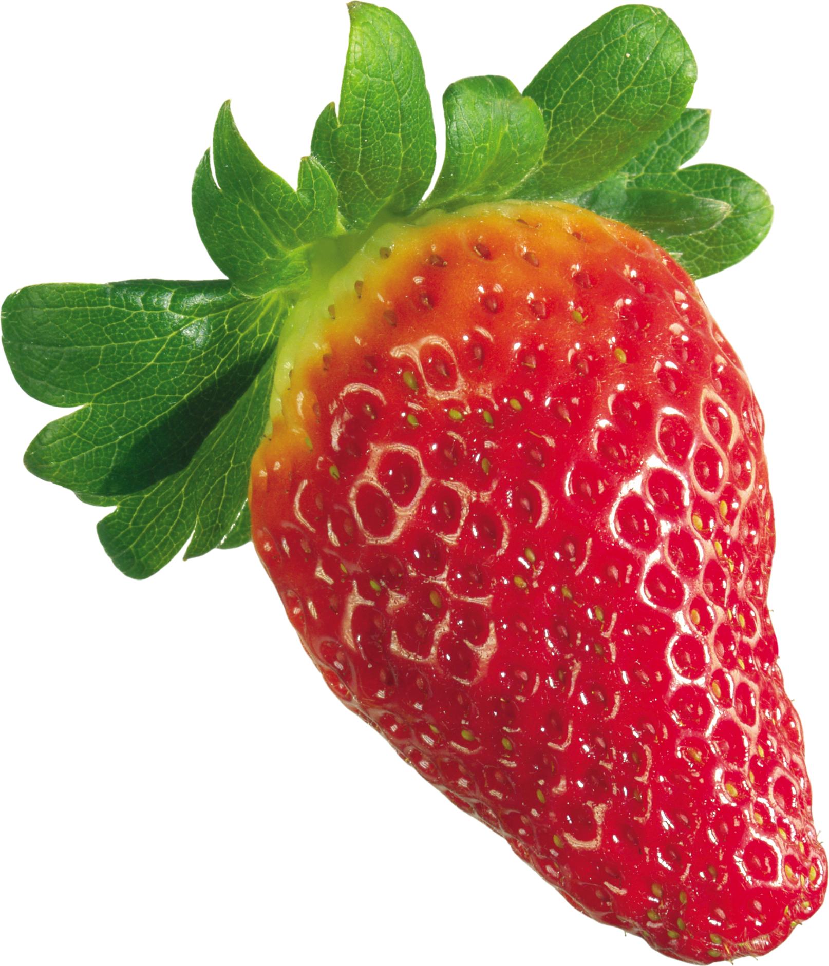 отказ ягода клубника картинка без белого фона раскраски для снятия