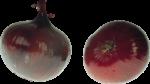 Скачать PNG картинку на прозрачном фоне Два фиолетовых лука
