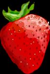 Скачать PNG картинку на прозрачном фоне Клубника, нарисованная, красная