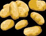 Скачать PNG картинку на прозрачном фоне Нарисованная картошка, картофель
