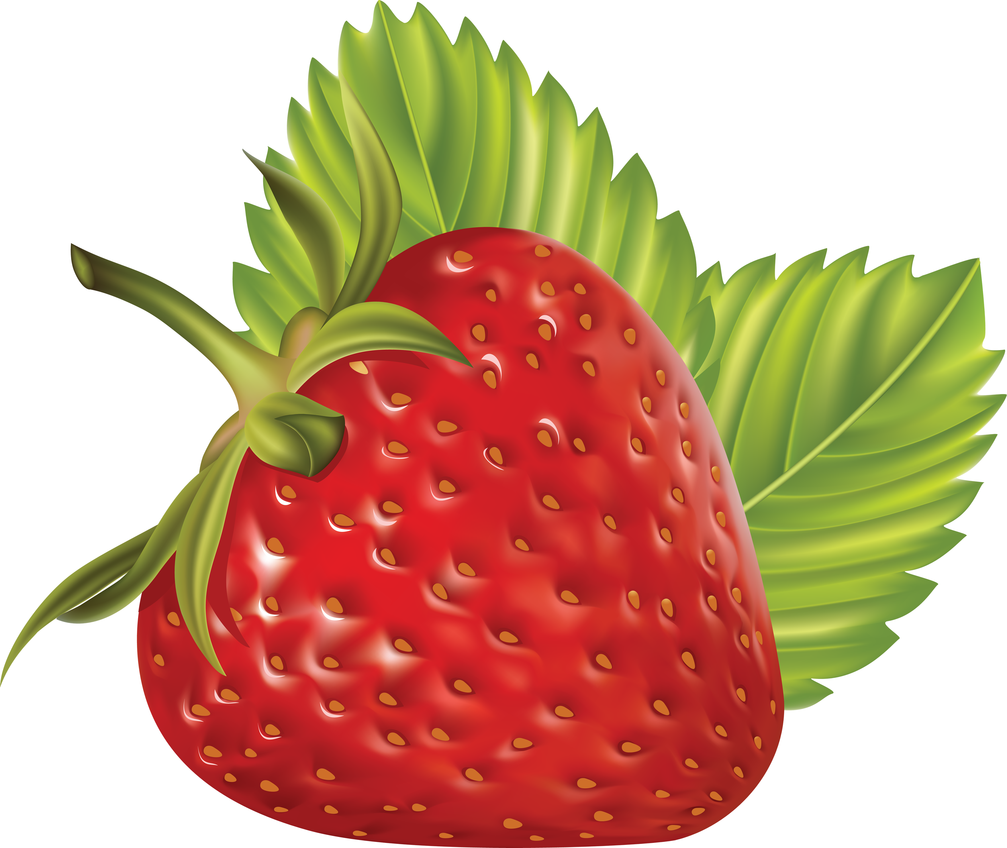 Картинки ягоды на прозрачном фоне для детей