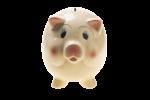 Скачать PNG картинку на прозрачном фоне Поросенок, свинья, копилка вид спереди