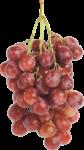 Скачать PNG картинку на прозрачном фоне Розовая гроздь винограда, вид сбоку
