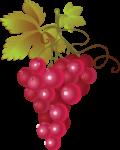 Скачать PNG картинку на прозрачном фоне Розовый виноград с листьями