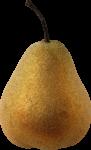 Скачать PNG картинку на прозрачном фоне Спелая груша, вид сбоку