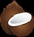 Скачать PNG картинку на прозрачном фоне Целый и половина кокоса