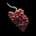 Скачать PNG картинку на прозрачном фоне Виноград, красный, гроздь