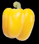 Скачать PNG картинку на прозрачном фоне Жжелтый болгарский перец, вид сверху