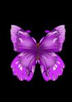 Скачать PNG картинку на прозрачном фоне бабочка, нарисованная, розовая, вид сверху