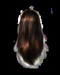 Скачать PNG картинку на прозрачном фоне Блестящие женские волосы, вид сзади
