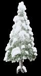 Скачать PNG картинку на прозрачном фоне большая ёлка вся в снегу, нарисованная