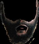 Скачать PNG картинку на прозрачном фоне Борода с длинными бакенбардами