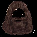 Скачать PNG картинку на прозрачном фоне Борода, с длинными волосами