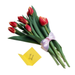 Скачать PNG картинку на прозрачном фоне Букет крысных тюльпанов с бантом
