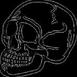 Скачать PNG картинку на прозрачном фоне Череп, вид сбоку, нарисованный