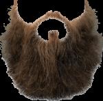Скачать PNG картинку на прозрачном фоне Длинная борода с бакенбардами