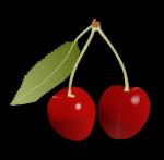 Скачать PNG картинку на прозрачном фоне Две нарисованные красные ягоды черешни на одной веточке с одним листиком