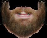 Скачать PNG картинку на прозрачном фоне Густая борода с бакенбардами