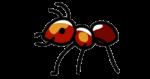 Скачать PNG картинку на прозрачном фоне Икока муравья, вид сбоку
