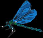 Скачать PNG картинку на прозрачном фоне Иллюстрация синей стрекозы, вид сбоку