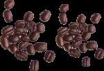 Скачать PNG картинку на прозрачном фоне Кофейные зерна