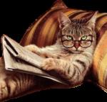Скачать PNG картинку на прозрачном фоне Кот лежит в очках и читает газету