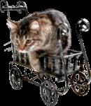 Скачать PNG картинку на прозрачном фоне Кот на железной тележке