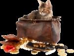 Скачать PNG картинку на прозрачном фоне Кот сидит испуганный в сумке, с кошельком и золотыми монетами