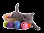 Скачать PNG картинку на прозрачном фоне Маленький серый котенок с клубками ниток