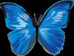 Скачать PNG картинку на прозрачном фоне Нарисованная голубая бабочка, вид сверху