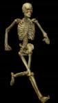Скачать PNG картинку на прозрачном фоне Нарисованный бегущий скелет