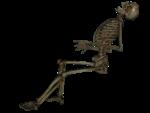 Скачать PNG картинку на прозрачном фоне Нарисованный скелет, сидит