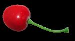 Скачать PNG картинку на прозрачном фоне Одна спелая ягода черешни