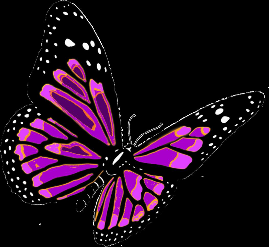 Красивая картинка бабочки на прозрачном фоне