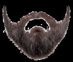 Скачать PNG картинку на прозрачном фоне Седая борода с бакенбардами