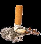 Скачать PNG картинку на прозрачном фоне Сигаретный окурок