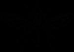 Скачать PNG картинку на прозрачном фоне Силуэт мухи