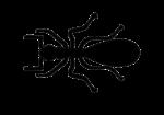 Скачать PNG картинку на прозрачном фоне Силуэт муравья, вид сверху