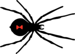 Скачать PNG картинку на прозрачном фоне Силуэт паука, с красным пятном, вид сверху