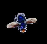 Скачать PNG картинку на прозрачном фоне Синяя-мужа-лежит,-вид-сизу