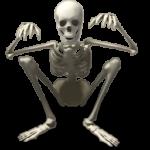 Скачать PNG картинку на прозрачном фоне Скелет нарисованный, сидит на корточках, вид спереди