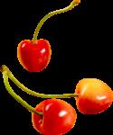 Скачать PNG картинку на прозрачном фоне Три оранжевые ягоды черешни с веточками