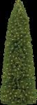 Скачать PNG картинку на прозрачном фоне высокая, конусообразная новогодняя елка