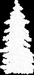 Скачать PNG картинку на прозрачном фоне Ёлка, нарисованная,белая, похожа на рыбные кости